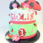 lady bird cake gateau coccinelle